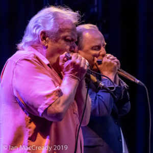 Downchild Blues Band